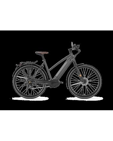 Cityzen Speed 380 - GAZELLE - vélo électrique