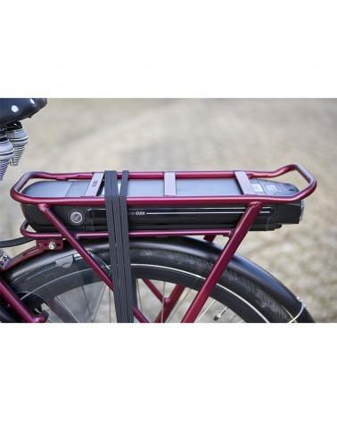 Aphrodite_VAN_DIJCK_vélo_électrique_porteur
