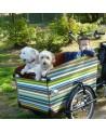 Triporteur Babboe Dog