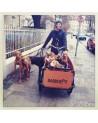 Triporteur électrique Babboe Dog-E