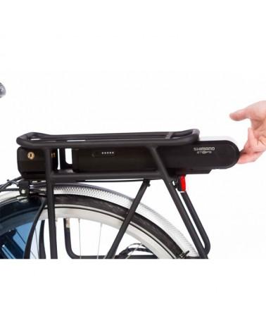 Biporteur électrique Business caisse isotherme long - BAKFIETS